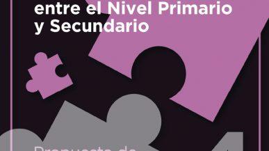 Articulación entre el Nivel Primario y Secundario – 4ta Propuesta de actividades de Matemática (docente)